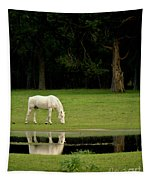 Flooded Field In May Tapestry