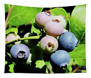 Florida - Blueberries - On The Bush Tapestry
