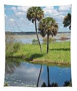 Florida Essence - The Myakka River Tapestry