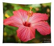 Florida Hibiscus Tapestry