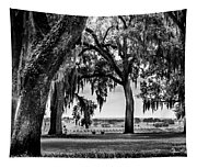 Florida Interior From Bok Gardens Tapestry