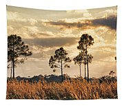 Florida Pine Landscape By H H Photography Of Florida Tapestry
