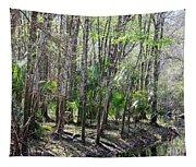 Florida Riverbank  Tapestry