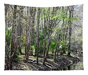 Florida Riverbank  Tapestry