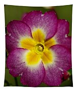 Flower 7 Tapestry