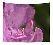 Flower With Pistil And Stamens Displayed Tapestry