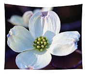 Flowering Dogwood Tapestry