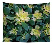 Flowering Succulent Plant Tapestry
