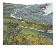 Flowing Water Tapestry