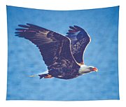 Fly By Eagle. 3 Of 3 Tapestry