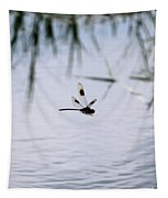 Flying Dragonfly Over Pond With Reeds Tapestry