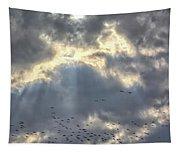 Flying Through Sun Rays 2 Tapestry