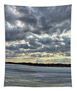Flying Through Sun Rays 4 Tapestry