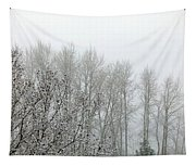 Fog And Light Snow Tapestry