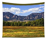 Foothills Of Colorado Tapestry