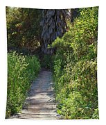 Footpath In Peters Canyon I Tapestry