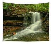 Forbes State Forest Cole Run Cave Falls Tapestry