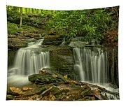 Forbes State Forest Twin Falls Tapestry