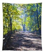 Forbidden Drive - Philadelphia Tapestry