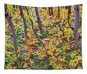 Forest Colors Tapestry