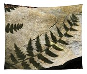 Forest Fern Shadows Tapestry