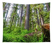 Forest Floor Of Hoh Rain Forest Tapestry