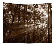 Forest Mist B And W Tapestry