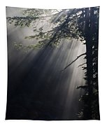 Forest Rays Tapestry