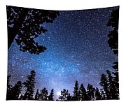 Forest Star Gazing An Astronomy Delight Tapestry