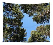 Forest Treetops Tapestry
