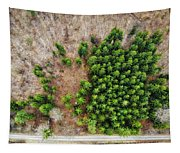 Forest With Green Trees From Above Tapestry