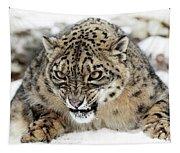 Forever Wild Tapestry