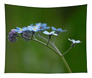 Forget-me-not 2 Tapestry
