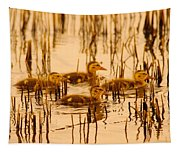 Four Baby Duckies Tapestry
