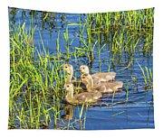 Four Goslings Tapestry