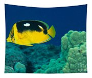 Fourspot Butterflyfish Tapestry