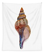Fox Shell Tapestry by Amy Kirkpatrick