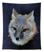 Foxburst Tapestry
