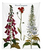 Foxglove And Hawkweed Tapestry