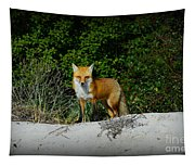 Foxy Lady Tapestry