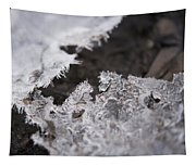 Fragmented Ice Tapestry