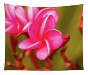 Pink Frangipani Plumeria Flowers Tapestry