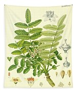 Frankincense Tapestry