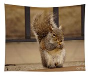 French Fry Eating Squirrel Tapestry