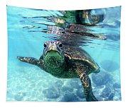 friendly Hawaiian sea turtle  Tapestry