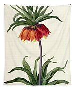 Fritillaria Imperialis Tapestry