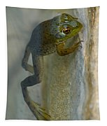 Frog Swim Tapestry
