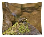 Froggy On A Hill Tapestry
