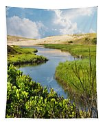 From The Sand Dunes To The Beach Tapestry