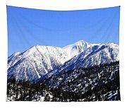 Frontier Splendor Tapestry